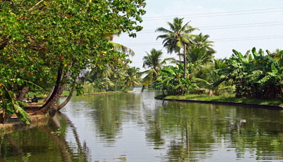 Kumatakom Backwaters
