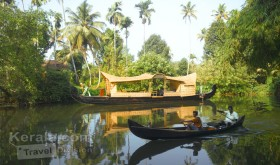 Backwater View