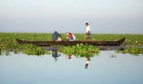 Fishing Vembanad